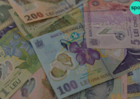 Au fost aprobate normele pentru IMM Invest, IMM Factor şi IMM Leasing