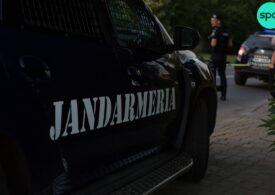 Jandarmii să oprească în trafic şi să controleze transporturile de lemne - proiect de lege