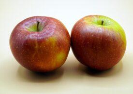 Un măr pe zi… sau mai bine nu? Microplasticele au ajuns şi în fructe şi legume