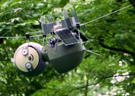Un robot inspirat de leneş ajută, foarte încet, la salvarea speciilor pe cale de dispariţie