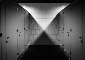 Guvernul dă bani pentru toaletele din 375 de școli. Cam 83.000 de lei pe una