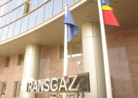 Termocentrala de la Mintia a fost oprită din nou, după ce Transgaz a sistat furnizarea gazului din cauza unor datorii