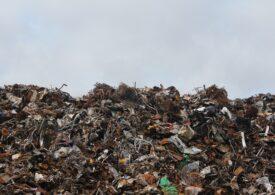 Legea compostului a trecut de Parlament. Autoritățile sunt obligate să organizeze colectarea separată de la fiecare familie din România