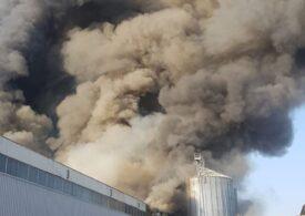 Incendiu de proporții în Bragadiru, cu risc de explozie. A fost emisă avertizare prin RO-Alert (Foto)