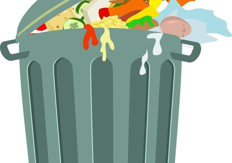 40% din producţia mondială de alimente este risipită