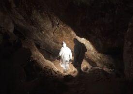 Prezenţa oamenilor în America de Nord datează de acum 30.000 de ani. Printre autorii studiului, un arheolog român