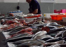 La ce trebuie să fii atent când cumperi pește