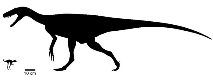 S-a descoperit strămoșul dinozaurului. Nu e deloc așa cum își imaginau oamenii de știință!