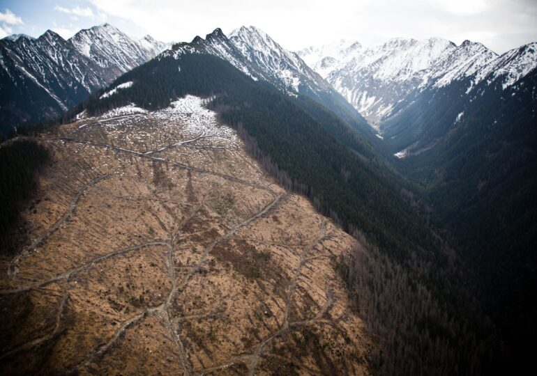 Omenirea a consumat deja toate resursele planetei - Alpinistul Alex Găvan: Trăim, practic, pe credit, şi ca orice credit, acesta va ajunge la scadenţă