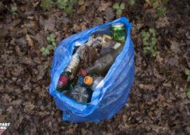 Plogging pentru România: Aleargă și curăță de gunoaie pădurea Cernica și alte zone verzi din Constanța și Prahova