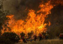 Incendii catastrofale