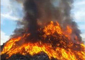 Incendiu la groapa de gunoi din Sighişoara (Video)