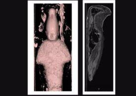 Ce-au descoperit oamenii de știință în interiorul a două mici mumii