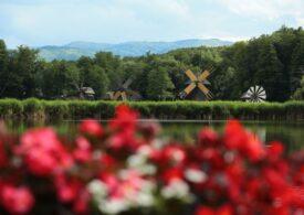 Astra Film Festival 2020 începe la Sibiu, iar spectatorii pot urmări proiecțiile din bărci care plutesc pe lac