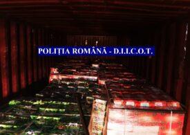 Droguri de 60 de milioane de euro, găsite în Portul Constanța! E cea mai mare captură de pastile și hașiș din istoria Poliției