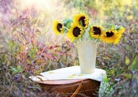 Meteo: Weekend de toamnă cu temperaturi de vară