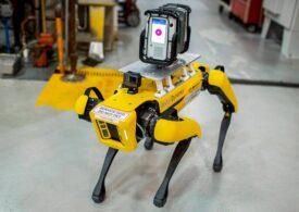 Ford a angajat primii roboţi cu patru picioare la fabrica din Michigan (Video)