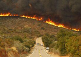 Incendiul de vegetaţie de la nord de Sacramento este cel mai mare din istoria Californiei