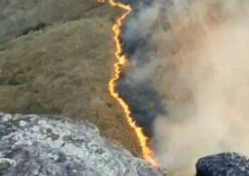 Brazilia a declarat stare de urgenţă din cauza incendiilor care mistuie cea mai umedă regiune a planetei (Foto&Video)