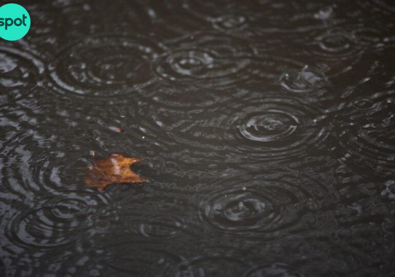 Şi tot plouă, şi tot plouă - prognoza meteo pe două săptămâni