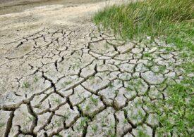Toate fântânile dintr-un sat din Prahova au secat. Cum îi ajută autoritățile pe localnici