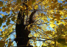 Meteo: Primul weekend din octombrie vine cu 32 de grade