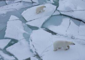 Niciodată nu a mai fost atât de puțină gheață la Polul Nord, în această perioadă a anului