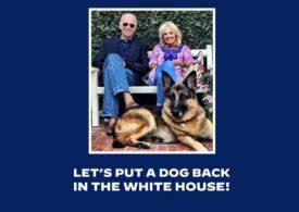 Câinii revin la Casa Albă cu o premieră. Biden aduce unul care a fost vagabond înainte de a ajunge prezidențial (Video)
