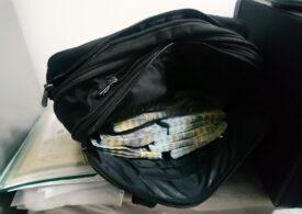 Mafia permiselor de la Suceava: 14 persoane au fost arestate, inclusiv şeful Compartimentului Regim Permise care lua până la 20.000 de euro pe zi de examen auto