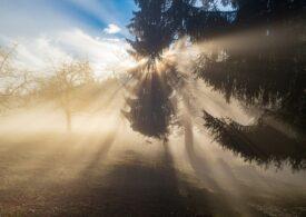Meteo: Vreme de primăvară. Doar ceața ne amintește că suntem încă în februarie
