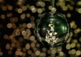 Vești bune: Electronice donate DSP, brazi licitați de Crăciun pentru copii și Transilvania recomandată de National Geographic