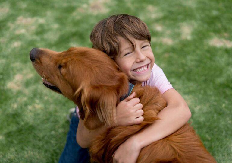 Ei sunt Dogtors, singurii câini asistenți pentru oamenii cu nevoi speciale din România. Ajută-i să ajungă unde e nevoie de ei!