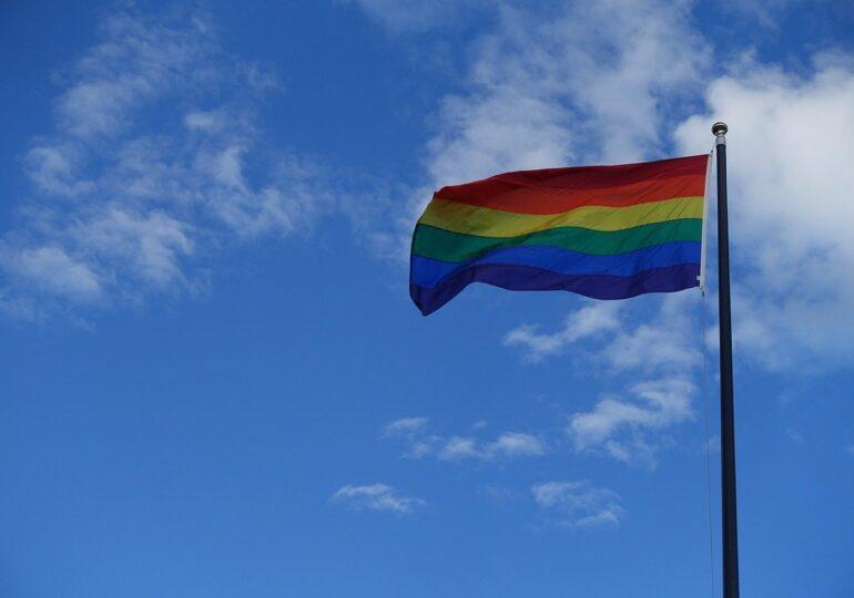 Partidul lui Viktor Orban propune o lege anti LGBT, comparată cu varianta Putin împotriva propagandei gay