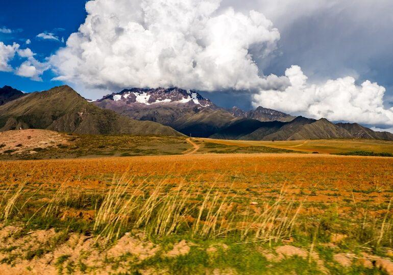 """20 de noi specii descoperite în Pădurea de nori a Boliviei: """"O vale neatinsă care debordează cu biodiversitate"""""""