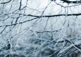 Meteo: Sfârșit de săptămână cu lapoviță și ninsoare