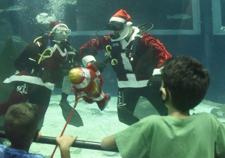 Când Moș Crăciun nu mai vine cu sania, ci într-un acvariu cu pești (Galerie foto)