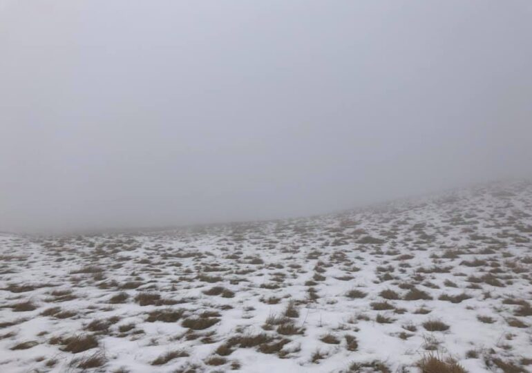 Cod galben de ninsori și ploi, până vineri
