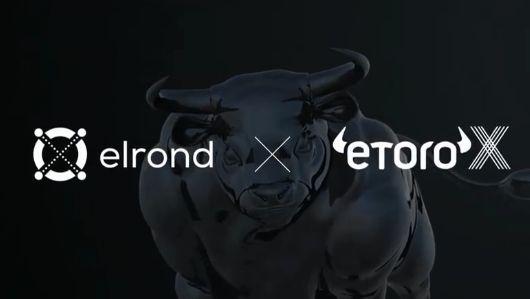 Elrond, reţeaua construită de ingineri români, şi-a listat criptomoneda eGold pe platforma internaţională eToroX