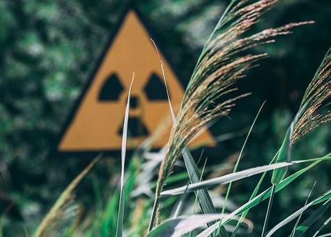Niveluri de radiații periculoase, descoperite în recoltele din afara zonei de excludere de la Cernobîl, la 34 de ani de la dezastrul nuclear