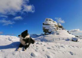 Atenție, turiști! Risc mare de avalanşă în Munţii Bucegi, Baiului şi Ciucaş