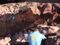 S-a descoperit cea mai mare viețuitoare care a mers pe Terra! Cântărea zeci de tone