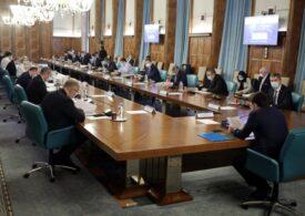 Guvern: Ministerele trebuie să elaboreze, până pe 4 februarie, un memorandum privind pierderile şi plățile restante înregistrate la finalul anului trecut