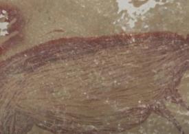 Cea mai veche pictură rupestră, descoperită într-o peşteră din Indonezia (Video)