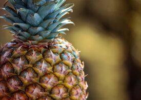O echipă de cercetători din Malaezia transformă resturi de ananas în piese de unică folosință pentru drone