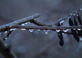 Avertizare de vreme rea pentru toată țara: Ne așteaptă ploi, ninsori, polei și vânt puternic