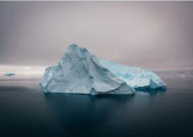 Balenele se întorc, în sfârșit, în regiunile polare, după 40 de ani de la interzicerea vânătorii comerciale
