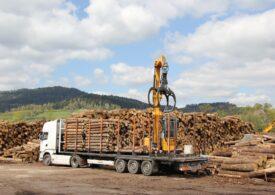 Cel mai important sistem de urmărire a lemnului va fi pus în funcțiune în această noapte. Ce poate face SUMAL 2.0