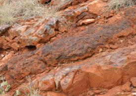 """""""Ingredientele vieții"""" au fost descoperite în Australia. Cât de vechi sunt"""