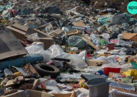 Cine sunt regii gunoiului din București. Au făcut averi din contracte cu primăriile de sector, iar Capitala e mizerabilă