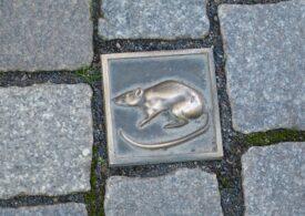 Londra e invadată de 20 de milioane de șobolani, atrași de gunoaiele strânse în lockdown